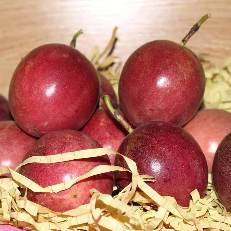 广西百香果热带水果带箱发5斤新鲜现货鸡蛋果现摘包邮